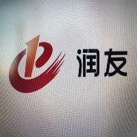 内蒙古润友科技有限公司